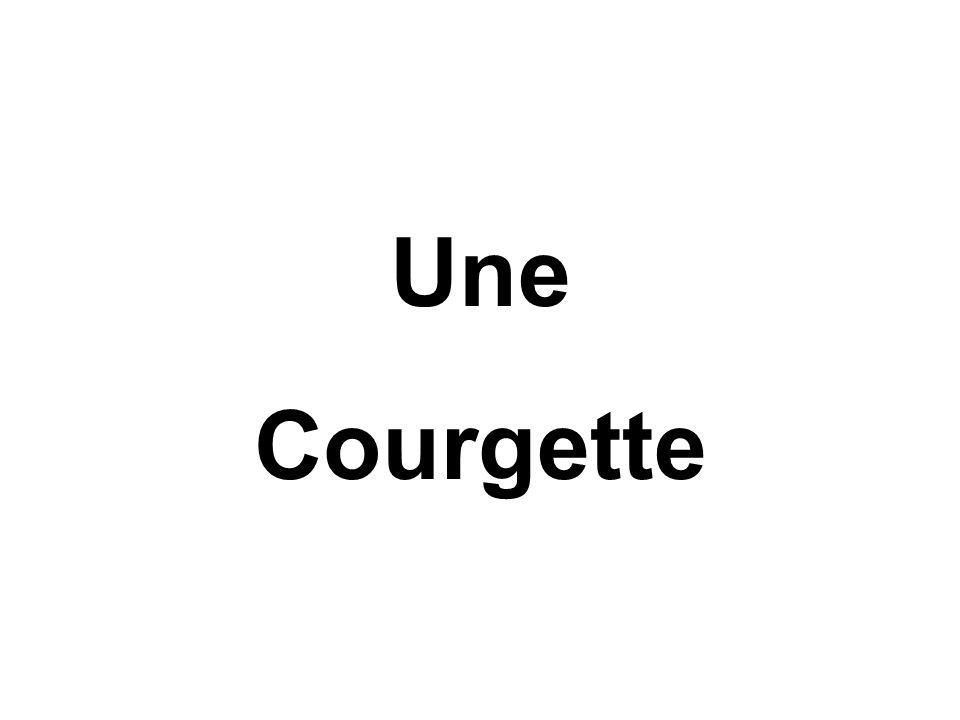 Une Courgette