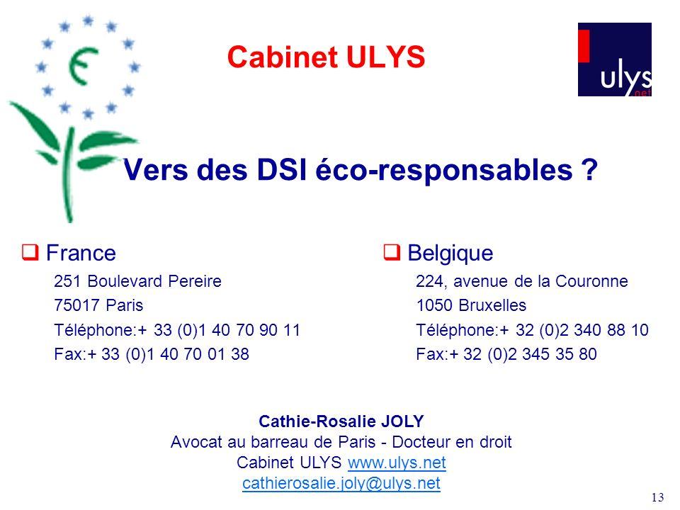 13 Cabinet ULYS Vers des DSI éco-responsables .