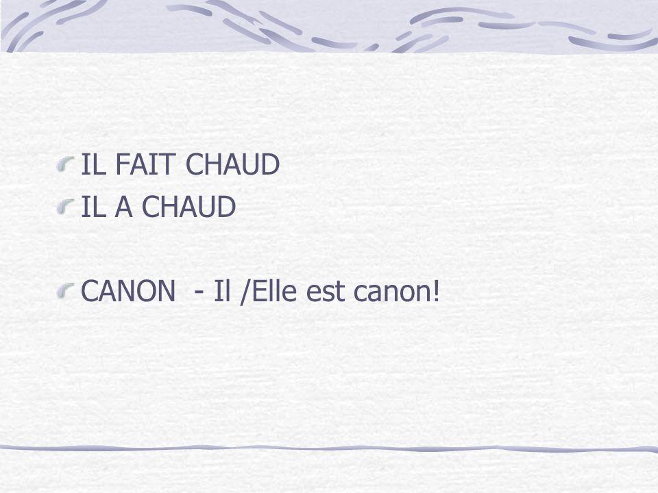 IL FAIT CHAUD IL A CHAUD CANON - Il /Elle est canon!