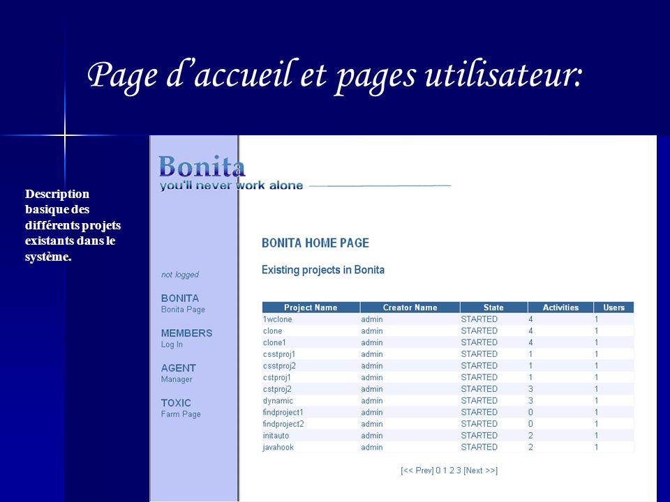 Page daccueil et pages utilisateur: Description basique des différents projets existants dans le système.