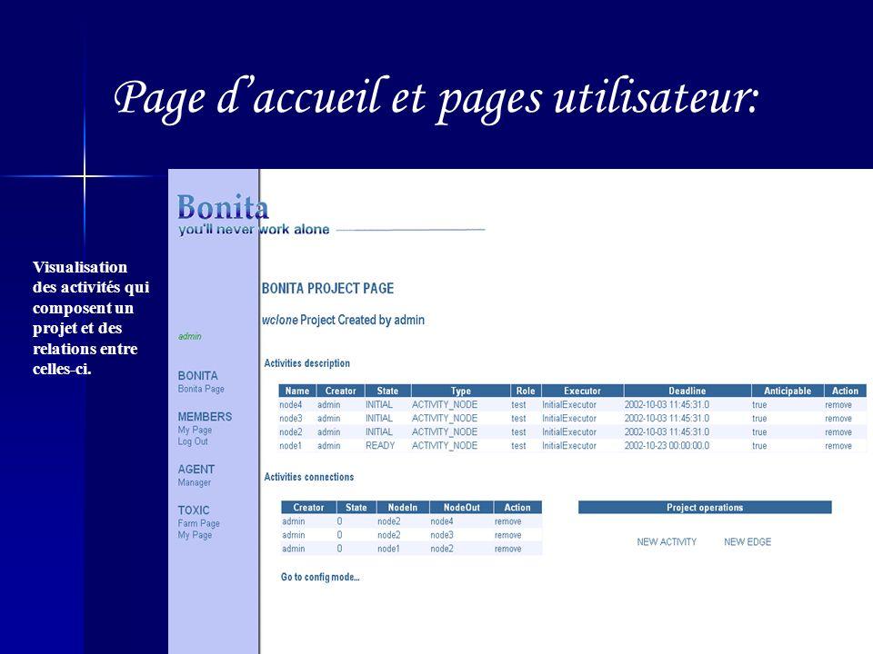Page daccueil et pages utilisateur: Visualisation des activités qui composent un projet et des relations entre celles-ci.