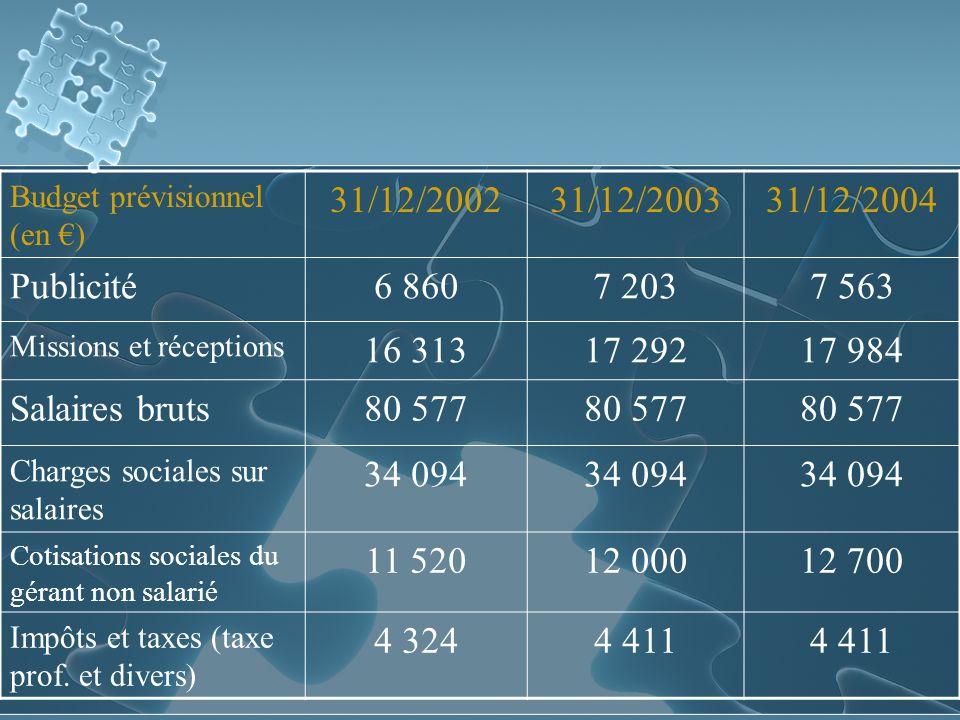 Budget prévisionnel (en ) 31/12/200231/12/200331/12/2004 Publicité6 8607 2037 563 Missions et réceptions 16 31317 29217 984 Salaires bruts80 577 Charges sociales sur salaires 34 094 Cotisations sociales du gérant non salarié 11 52012 00012 700 Impôts et taxes (taxe prof.