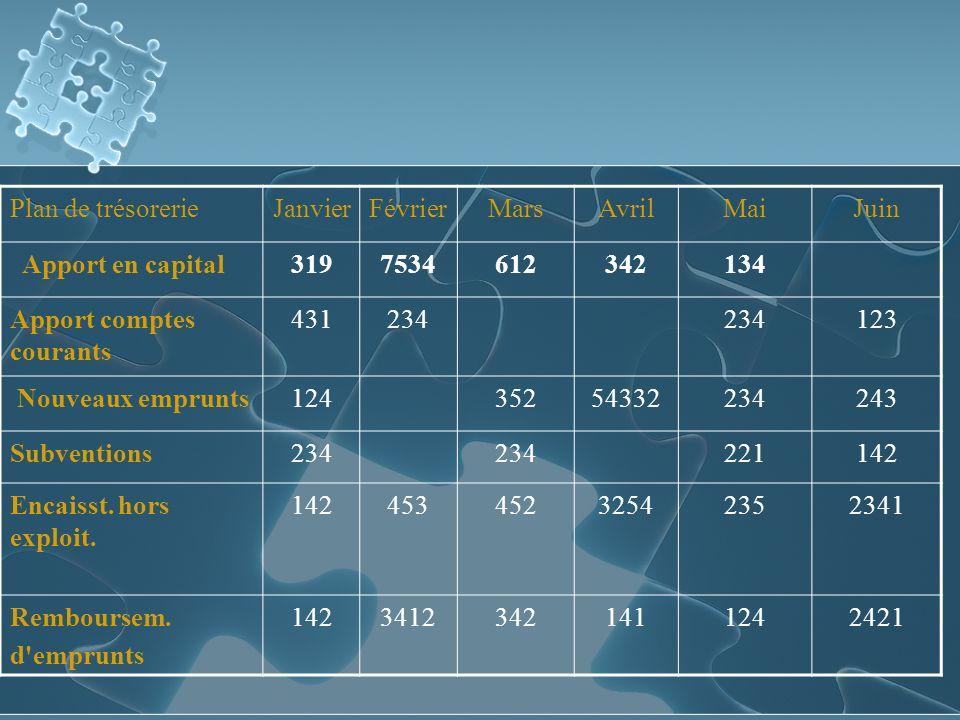Plan de trésorerieJanvierFévrierMarsAvrilMaiJuin Apport en capital3197534612342134 Apport comptes courants 431234 123 Nouveaux emprunts12435254332234243 Subventions234 221142 Encaisst.