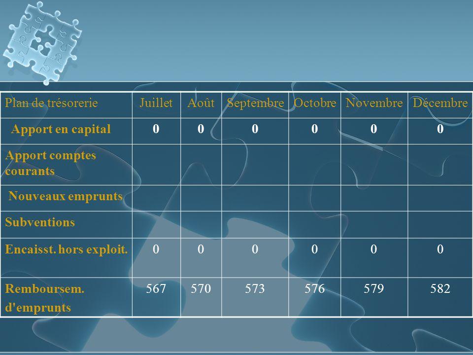Plan de trésorerieJuilletAoûtSeptembreOctobreNovembreDécembre Apport en capital000000 Apport comptes courants Nouveaux emprunts Subventions Encaisst.
