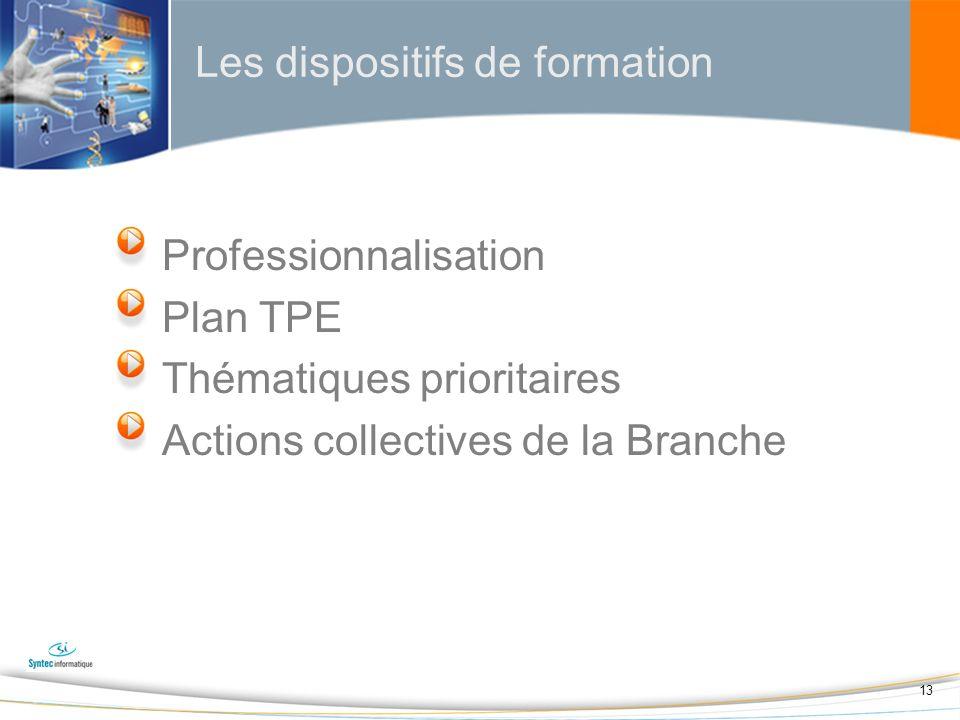 13 Les dispositifs de formation Professionnalisation Plan TPE Thématiques prioritaires Actions collectives de la Branche