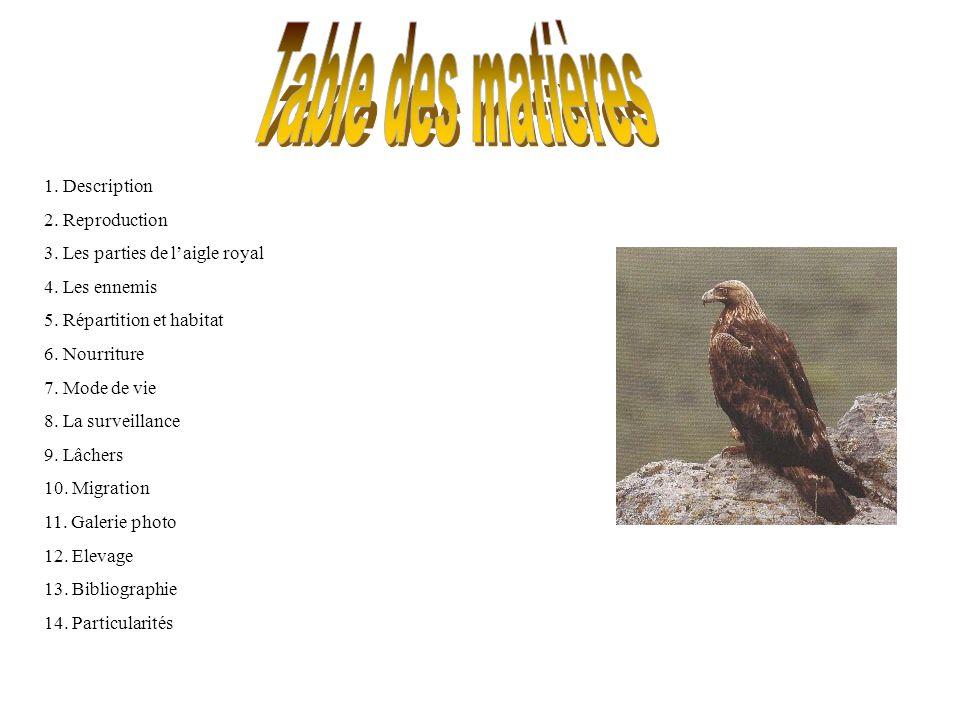 Ordre: Falconiforme ;famille:Accipitridés Taille:76cm à 90cm Envergure: 1m90 à 2m27 Poids: 4kg (mâle) 6kg (femelle) Longévité: 45 ans Plumage uniformément brun sombre, seuls le dessus de la tête et la nuque sont de coloration claire (brun clair à Jaune doré).