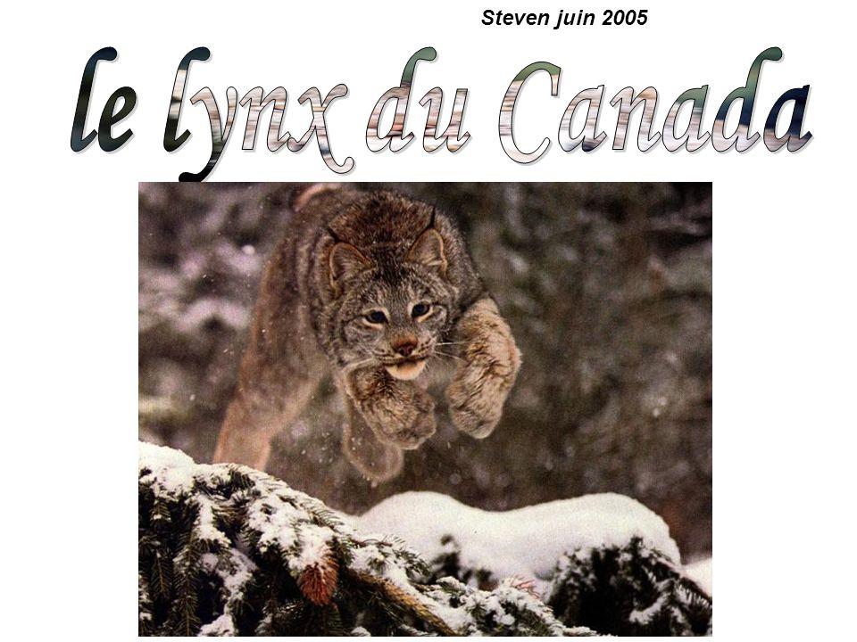 Steven juin 2005