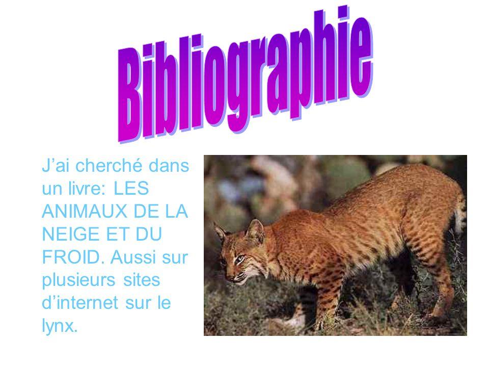 Jai cherché dans un livre: LES ANIMAUX DE LA NEIGE ET DU FROID. Aussi sur plusieurs sites dinternet sur le lynx.
