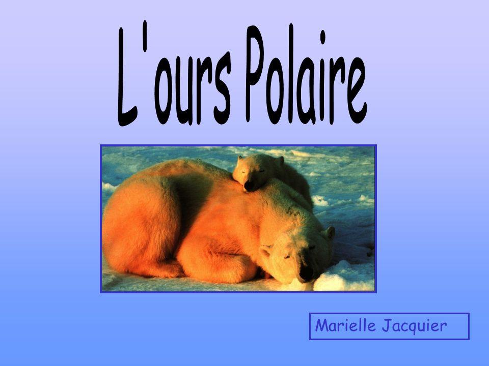 Marielle Jacquier