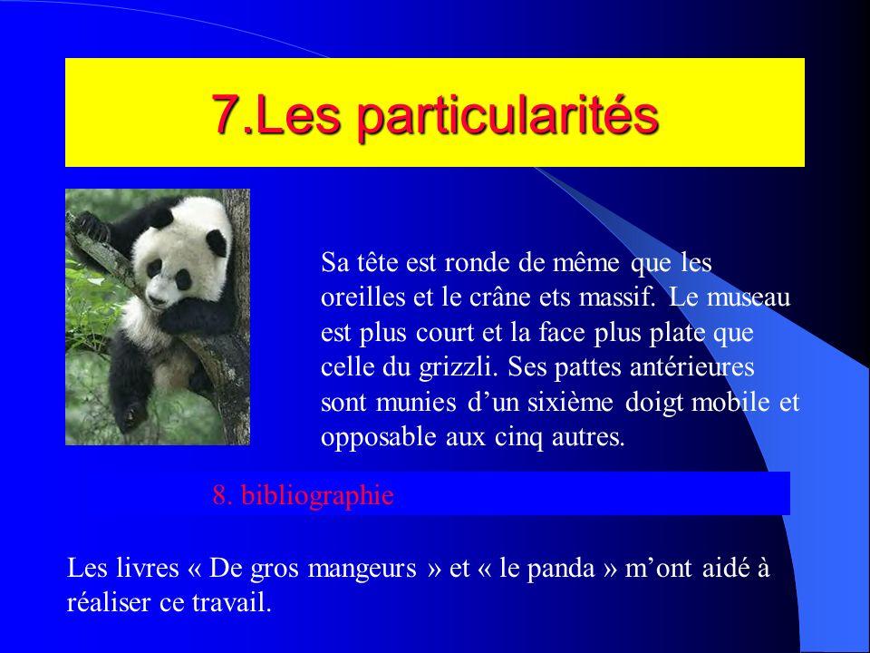 6.Les dangers Le panda est chassé par des hommes(braconniers)qui ensuite ils les tuent et vendent leur belle fourrure dans des pays tels que lAmérique