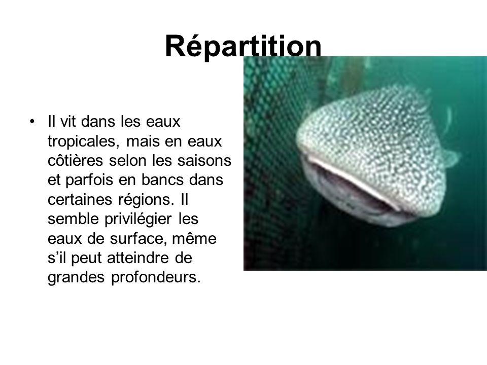 Répartition Il vit dans les eaux tropicales, mais en eaux côtières selon les saisons et parfois en bancs dans certaines régions.