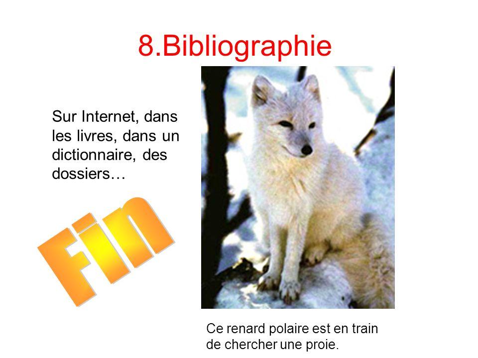 8.Bibliographie Sur Internet, dans les livres, dans un dictionnaire, des dossiers… Ce renard polaire est en train de chercher une proie.