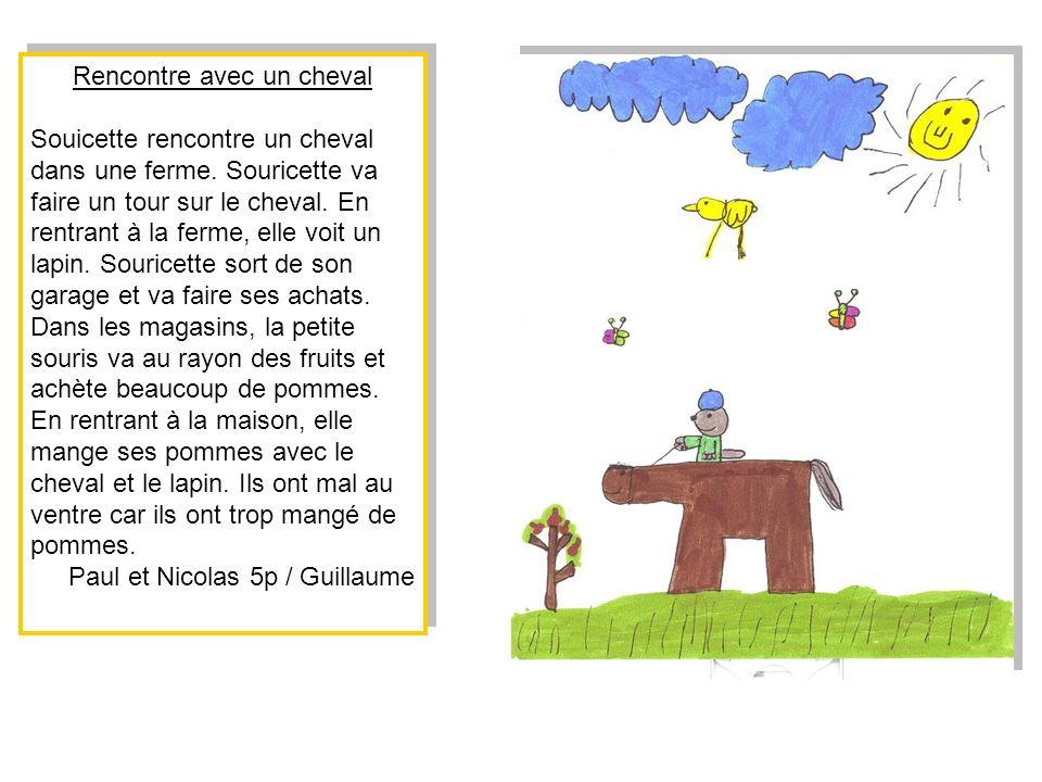Souricette rencontre la fée de la pluie Souricette se promène en forêt.