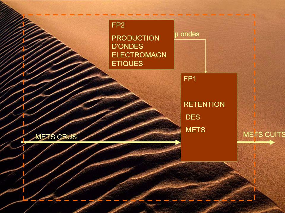 FP1 RETENTION DES METS METS CRUS METS CUITS FP2 PRODUCTION DONDES ELECTROMAGN ETIQUES µ ondes