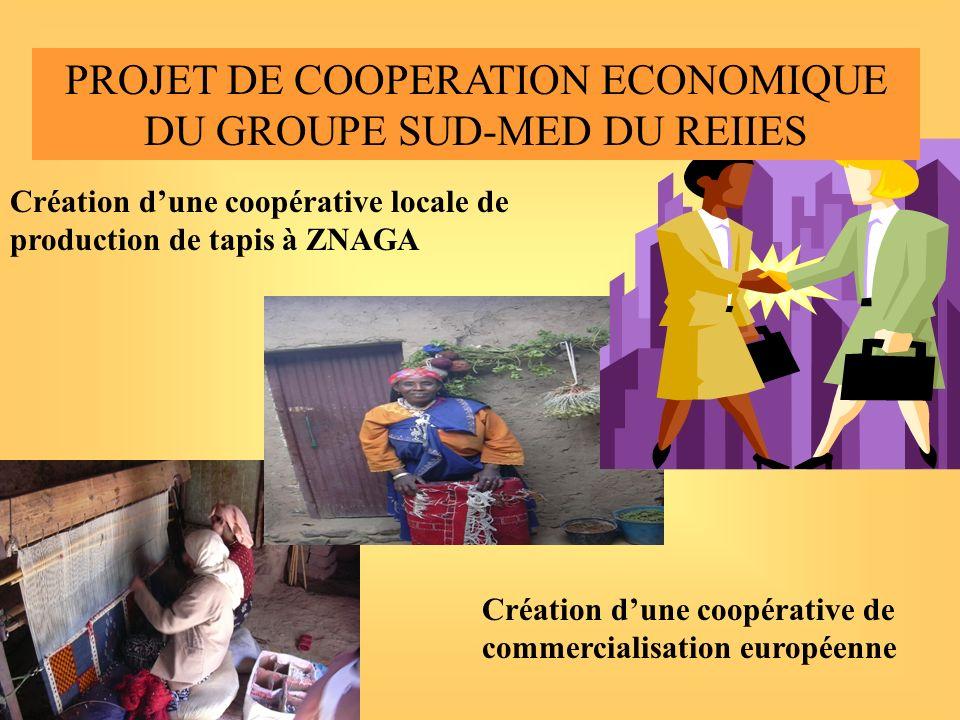 CREATION DE COOPERATIVES: CESVIP:-développer un projet de création dune coopérative de production marocaine et dune coopérative commerciale européenne -soumettre ce projet au prochain CA du REIIES(Sept 04) Actions décidées par le Groupe SUD-MED du REEIES le 2 juillet 2004