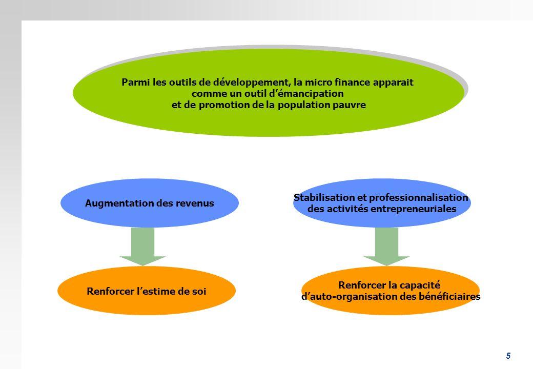 5 Parmi les outils de développement, la micro finance apparait comme un outil démancipation et de promotion de la population pauvre Parmi les outils d