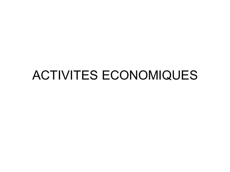 ACTIVITES ECONOMIQUES