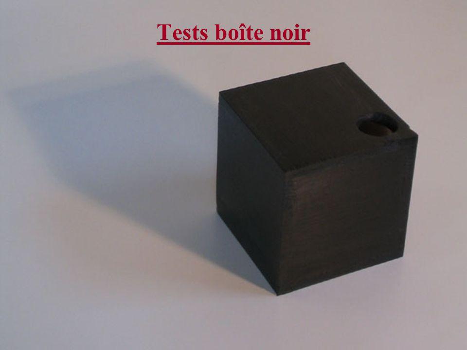 Hiver 2005Maj JGA Beaulieu & Capt MWP LeSauvage Tests boîte noir