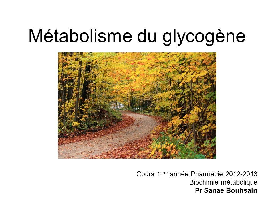 Métabolisme du glycogène Cours 1 ière année Pharmacie 2012-2013 Biochimie métabolique Pr Sanae Bouhsain