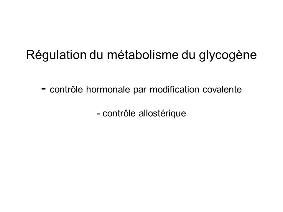 Régulation du métabolisme du glycogène - contrôle hormonale par modification covalente - contrôle allostérique