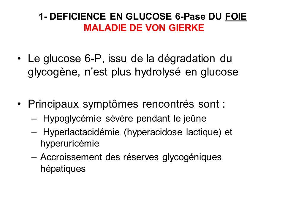 1- DEFICIENCE EN GLUCOSE 6-Pase DU FOIE MALADIE DE VON GIERKE Le glucose 6-P, issu de la dégradation du glycogène, nest plus hydrolysé en glucose Prin