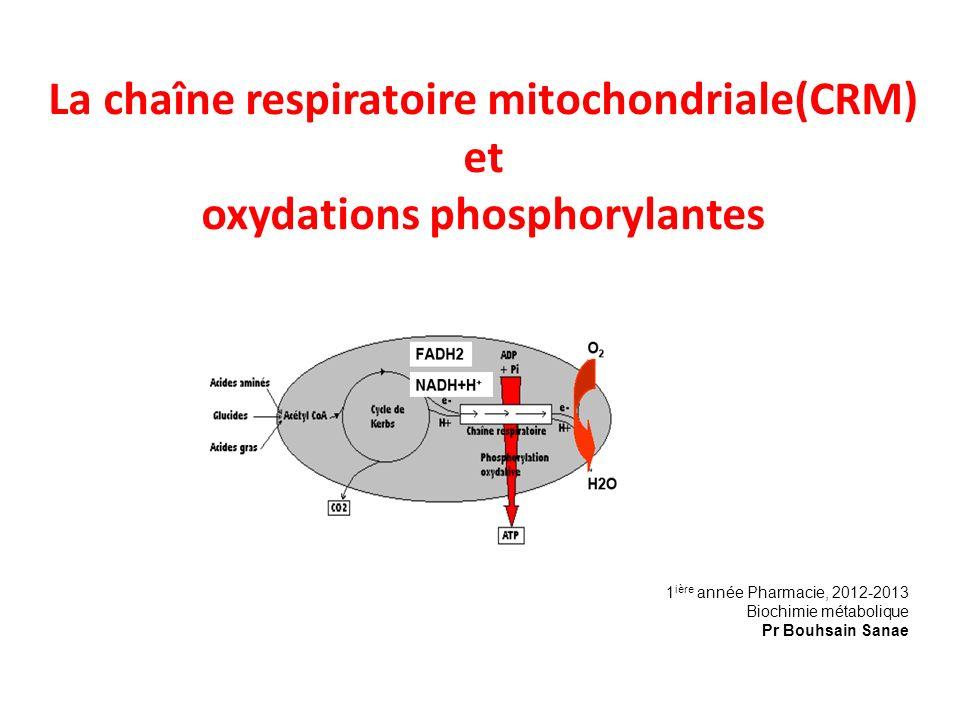 La chaîne respiratoire mitochondriale(CRM) et oxydations phosphorylantes 1 ière année Pharmacie, 2012-2013 Biochimie métabolique Pr Bouhsain Sanae