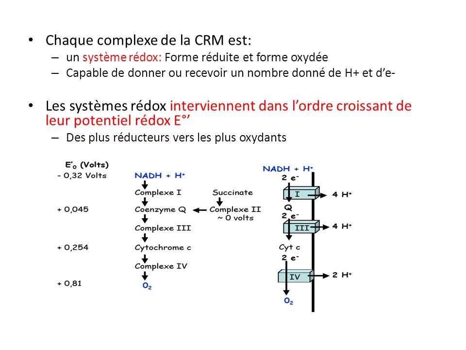 Chaque complexe de la CRM est: – un système rédox: Forme réduite et forme oxydée – Capable de donner ou recevoir un nombre donné de H+ et de- Les syst
