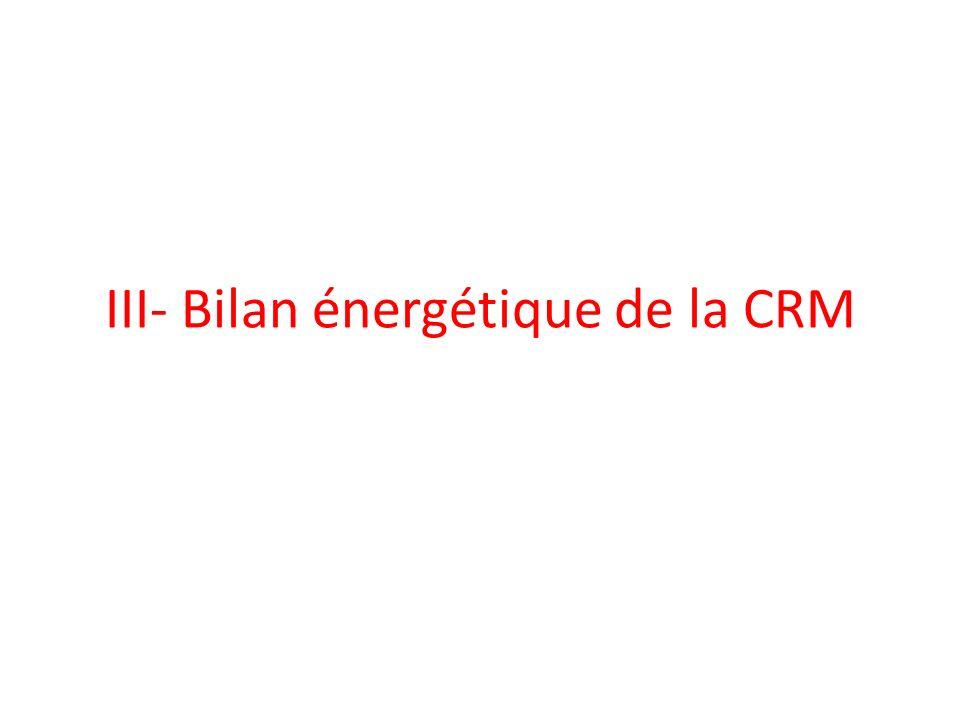 III- Bilan énergétique de la CRM