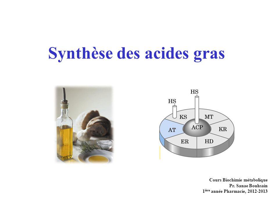 Synthèse des acides gras Cours Biochimie métabolique Pr.