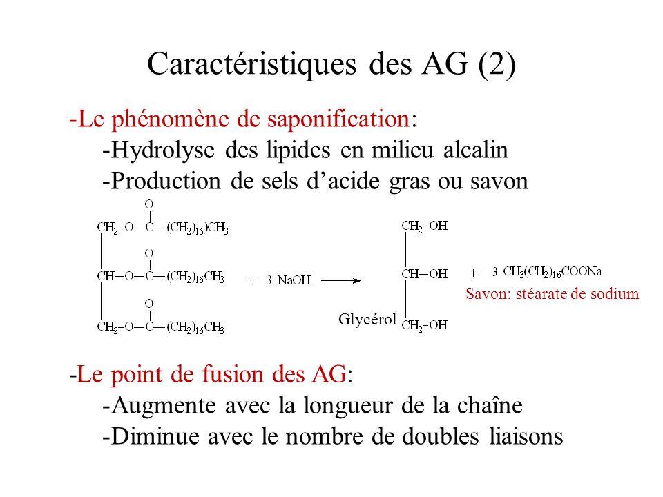 Caractéristiques des AG (2) -Le phénomène de saponification: -Hydrolyse des lipides en milieu alcalin -Production de sels dacide gras ou savon Savon: stéarate de sodium Glycérol -Le point de fusion des AG: -Augmente avec la longueur de la chaîne -Diminue avec le nombre de doubles liaisons