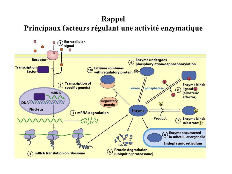 Rappel Principaux facteurs régulant une activité enzymatique