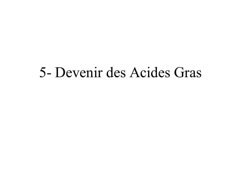 5- Devenir des Acides Gras