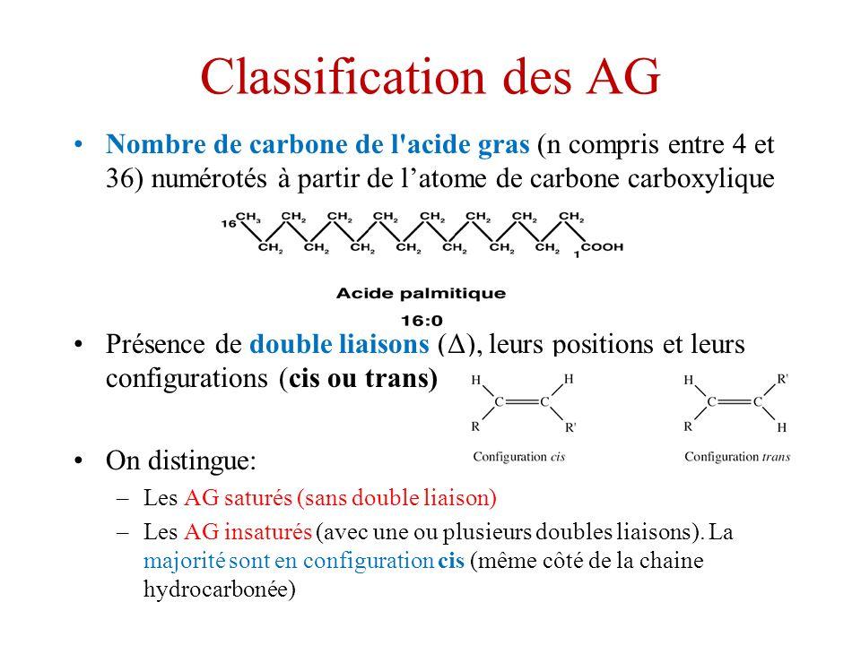 Classification des AG Nombre de carbone de l acide gras (n compris entre 4 et 36) numérotés à partir de latome de carbone carboxylique Présence de double liaisons (Δ), leurs positions et leurs configurations (cis ou trans) On distingue: –Les AG saturés (sans double liaison) –Les AG insaturés (avec une ou plusieurs doubles liaisons).