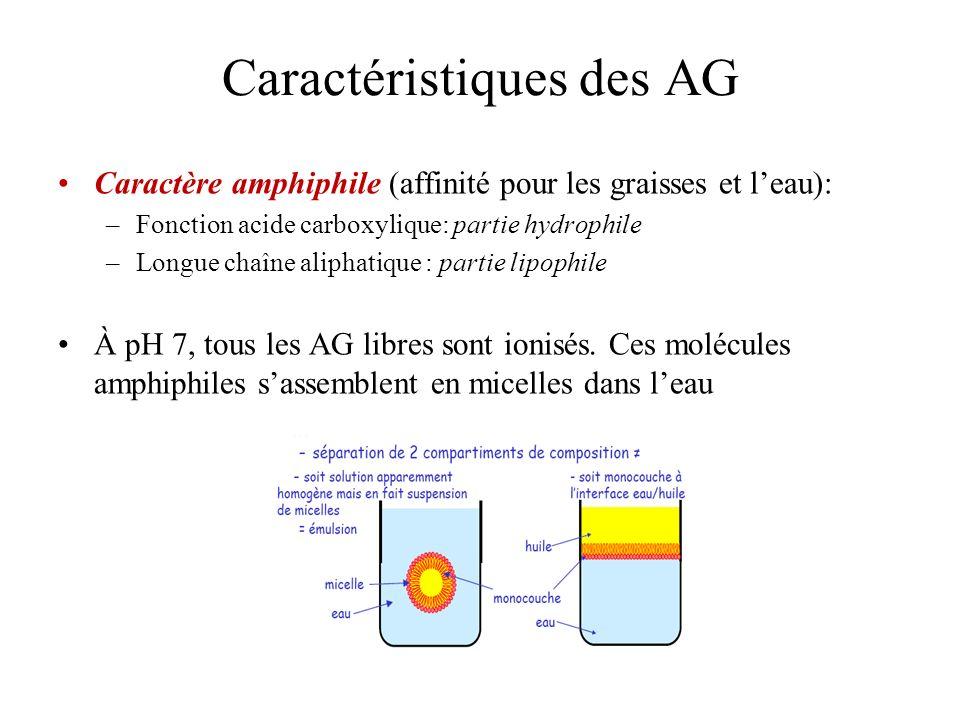 Caractéristiques des AG Caractère amphiphile (affinité pour les graisses et leau): –Fonction acide carboxylique: partie hydrophile –Longue chaîne aliphatique : partie lipophile À pH 7, tous les AG libres sont ionisés.