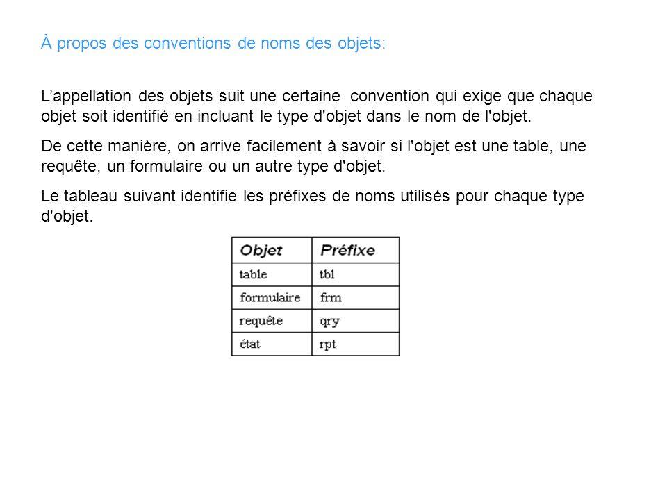À propos des conventions de noms des objets: Lappellation des objets suit une certaine convention qui exige que chaque objet soit identifié en incluan