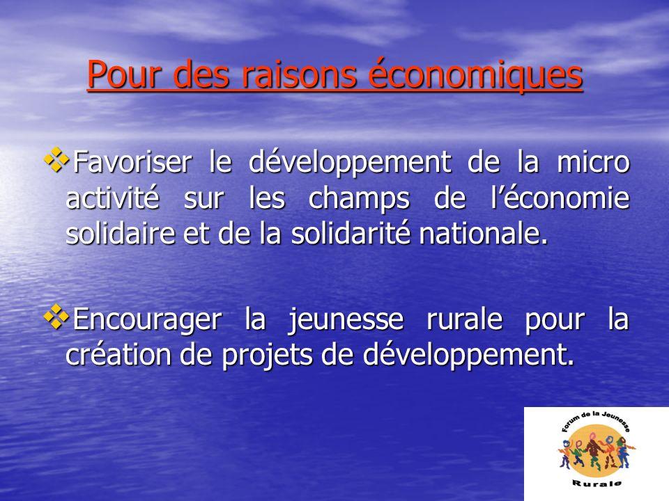 Pour des raisons économiques Favoriser le développement de la micro activité sur les champs de léconomie solidaire et de la solidarité nationale. Favo