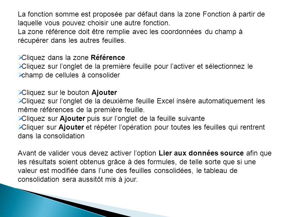 La fonction somme est proposée par défaut dans la zone Fonction à partir de laquelle vous pouvez choisir une autre fonction. La zone référence doit êt