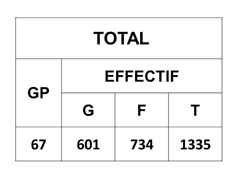 TOTAL GP EFFECTIF GFT 676017341335