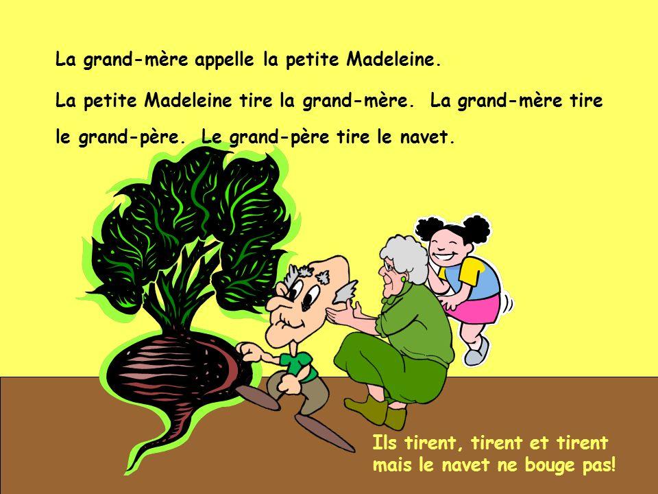 La grand-mère appelle la petite Madeleine. Ils tirent, tirent et tirent mais le navet ne bouge pas! La petite Madeleine tire la grand-mère. La grand-m