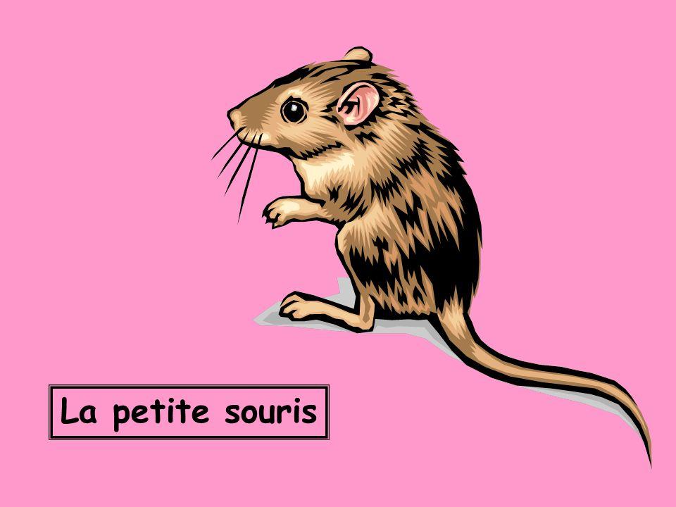 La petite souris