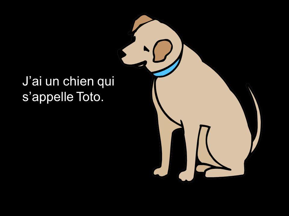 Jai un chien qui sappelle Toto.