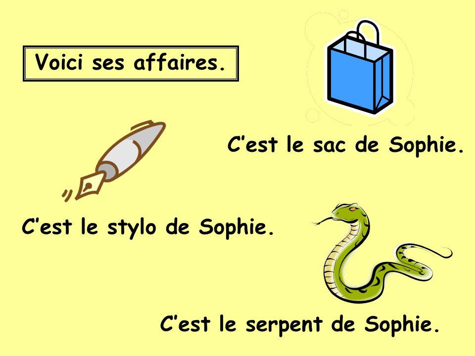 Voici ses affaires. Cest le stylo de Sophie. Cest le serpent de Sophie. Cest le sac de Sophie.