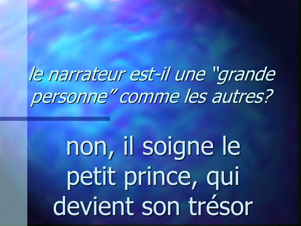 le narrateur est-il une grande personne comme les autres? non, il soigne le petit prince, qui devient son trésor