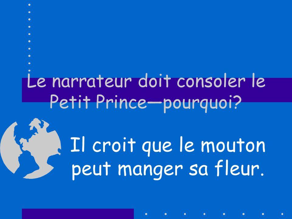 Le narrateur doit consoler le Petit Princepourquoi? Il croit que le mouton peut manger sa fleur.