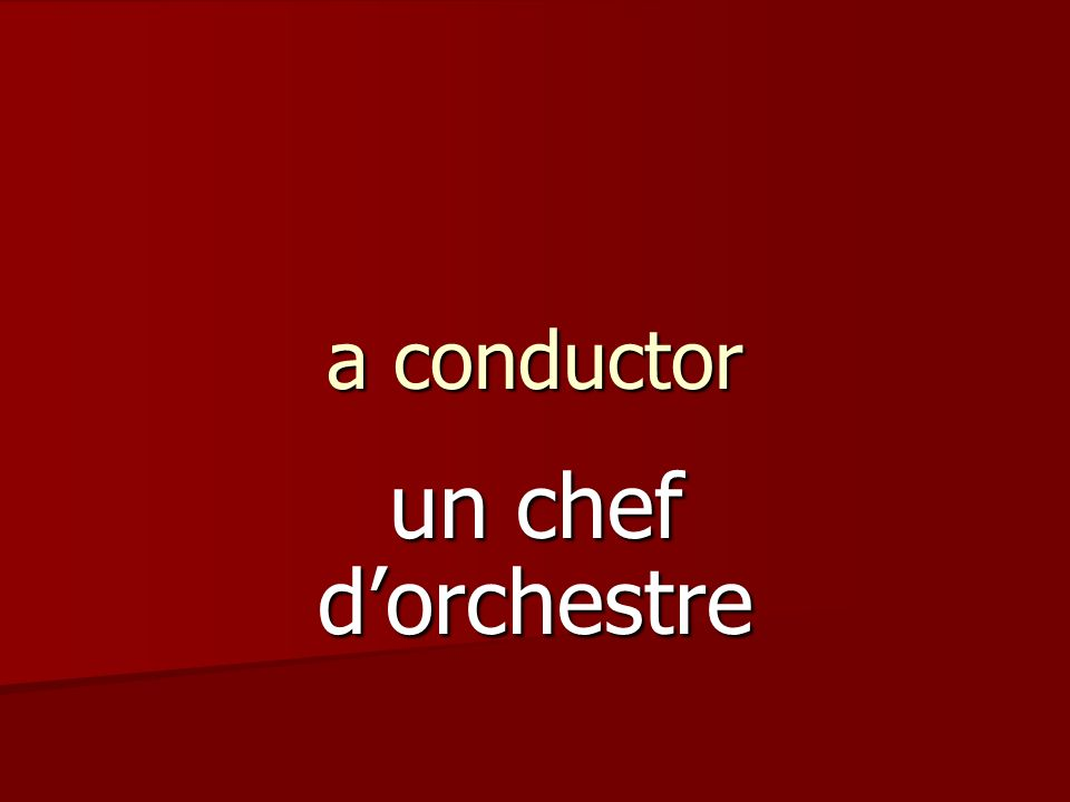 a conductor un chef dorchestre