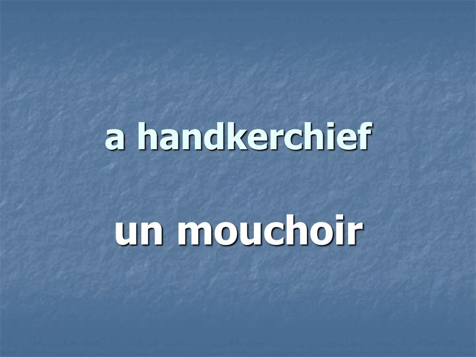 a handkerchief un mouchoir