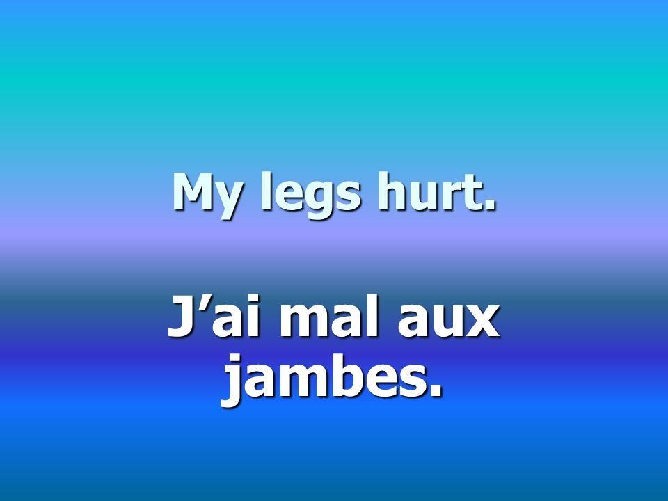 My legs hurt. Jai mal aux jambes.