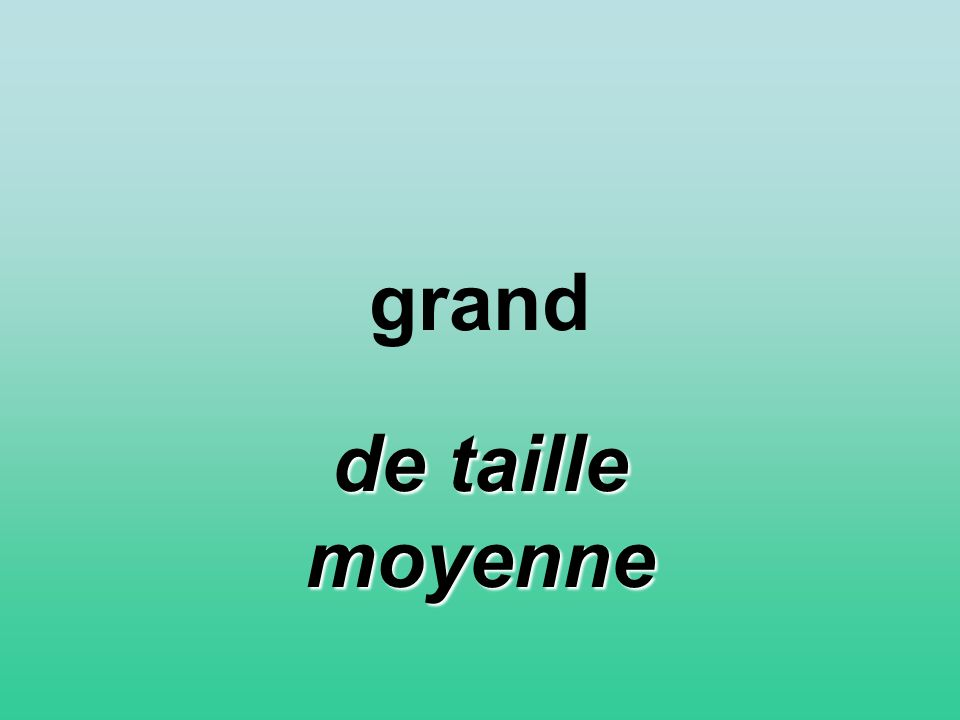 grand de taille moyenne