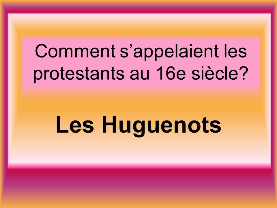 Comment sappelaient les protestants au 16e siècle Les Huguenots