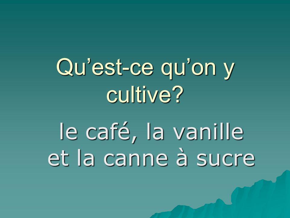Quest-ce quon y cultive le café, la vanille et la canne à sucre